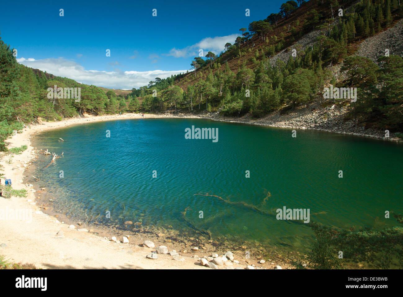 Un Lochan Uaine, le Livre vert Lochan, Glen More, Aviemore, parc national de Cairngorm, Highland Photo Stock