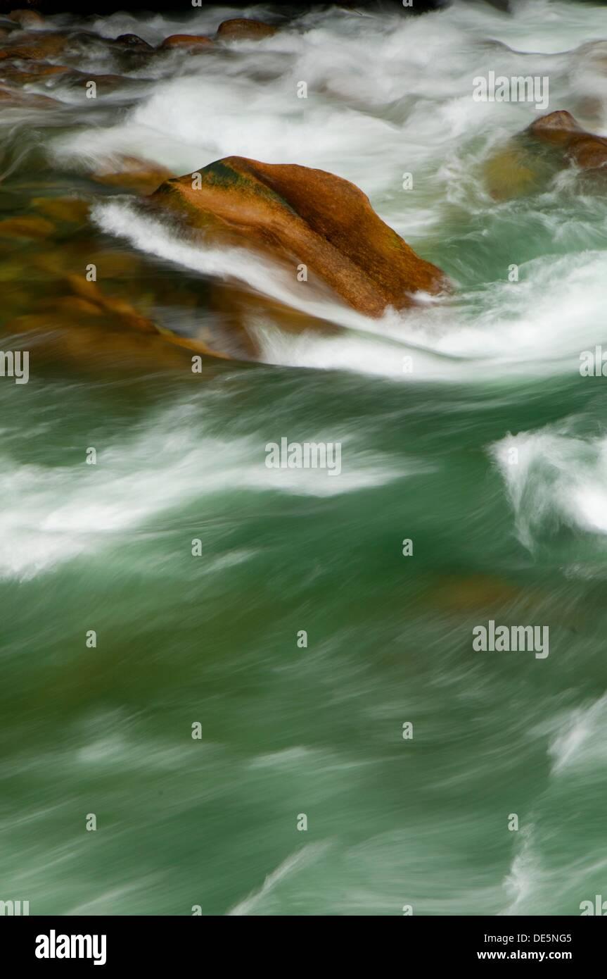 La rivière Coquihalla Canyon Coquihalla, Provincial Park, British Columbia, Canada Banque D'Images