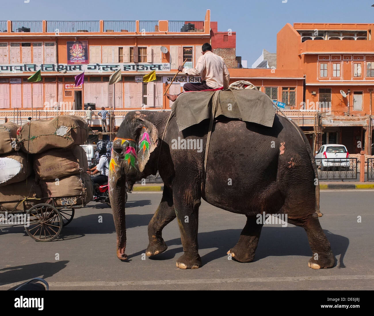 L'Inde, Rajasthan, Jaipur, éléphant en road Photo Stock