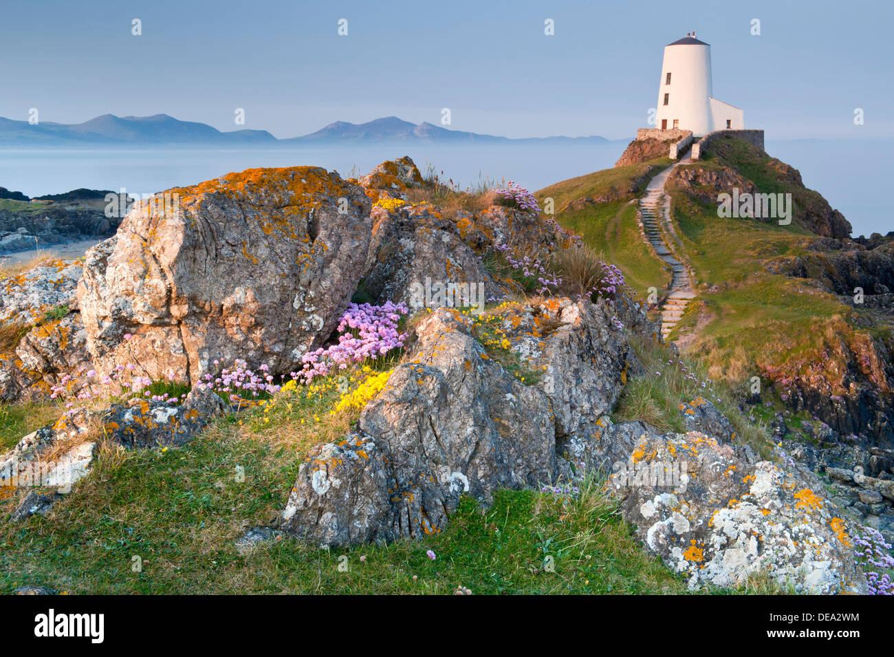 Tŵr Mawr Leuchtturm soutenu par la péninsule de Lleyn, île Llanddwyn, Newborough, Anglesey, au nord du Pays de Galles Photo Stock