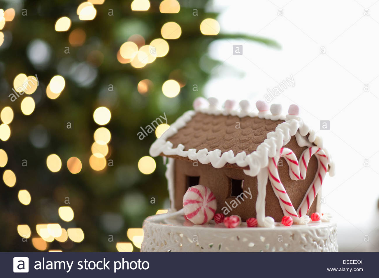 Gingerbread House in front of Christmas Tree Photo Stock