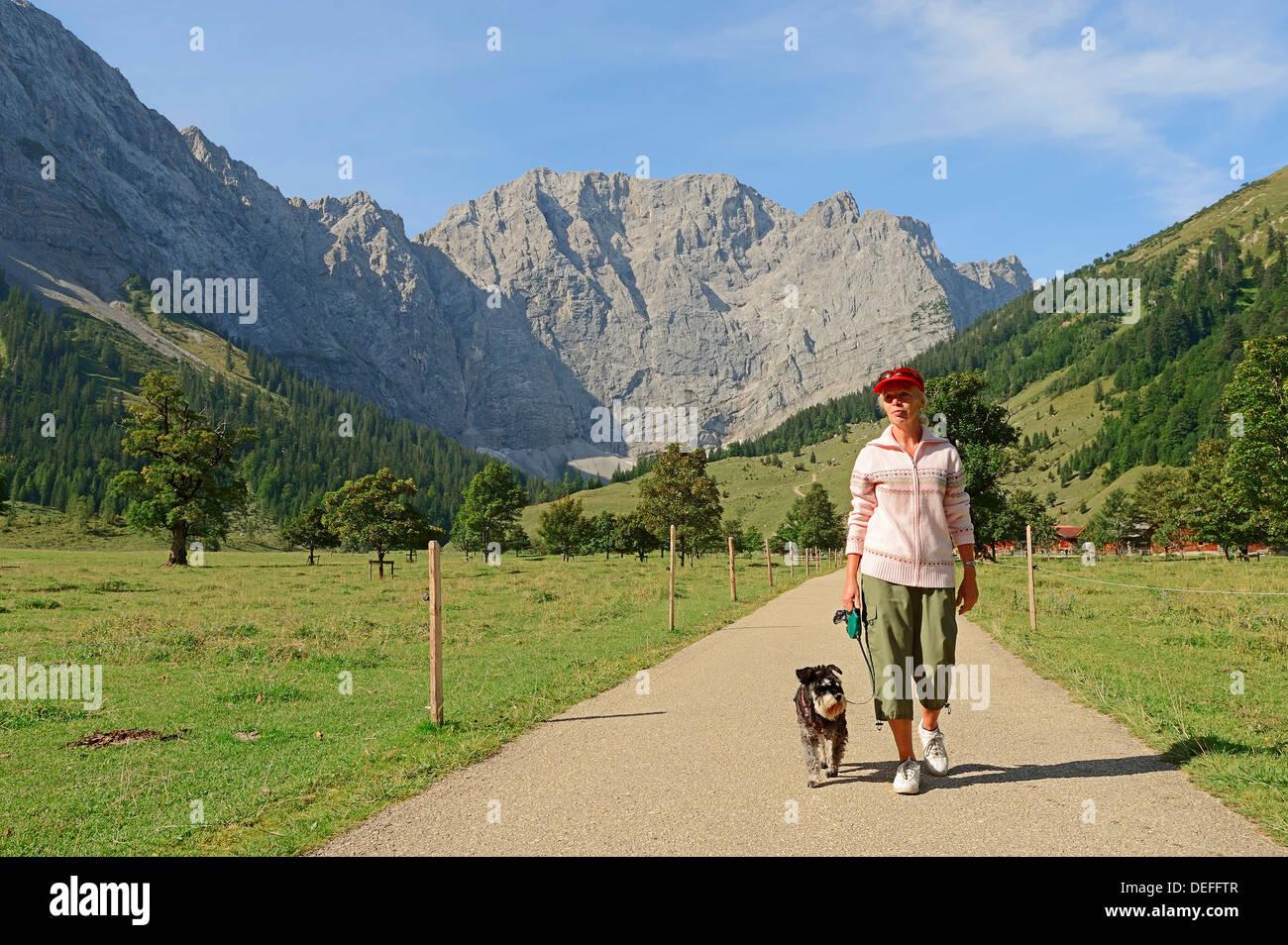 Randonnée femme avec un schnauzer nain, Engalm, en avant des montagnes du Karwendel, Großer Ahornboden, Karwendel Feriendorf Banque D'Images