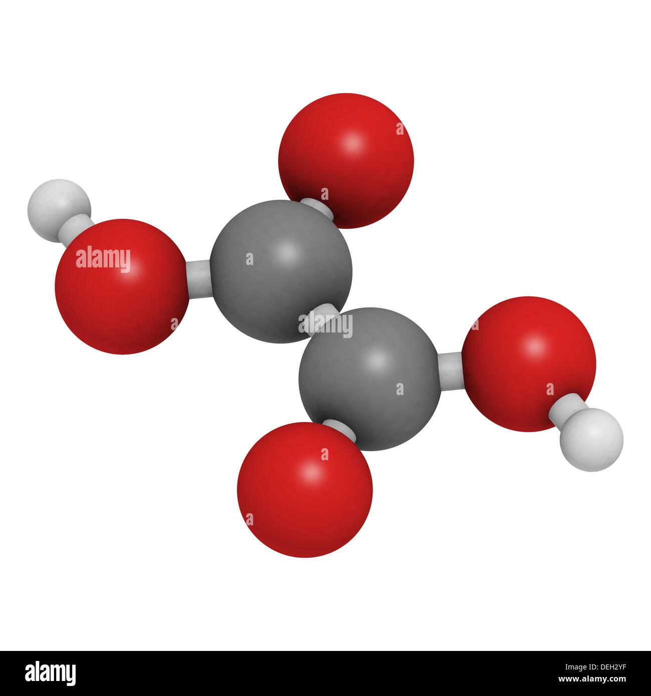 mol cule d 39 acide oxalique son sel oxalate de calcium est le principal composant de la plupart. Black Bedroom Furniture Sets. Home Design Ideas