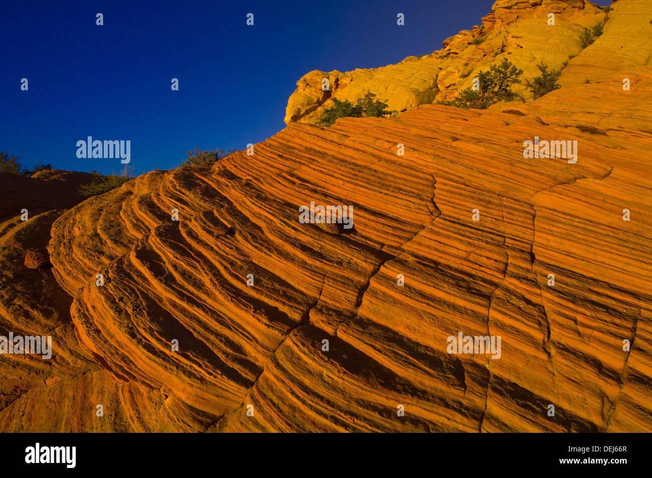 Des formations rocheuses, des trous d'eau Canyon, Navajo Nation, près de Page, Arizona USA Photo Stock