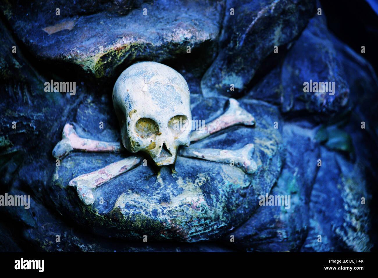 Nature morte Photo Stock
