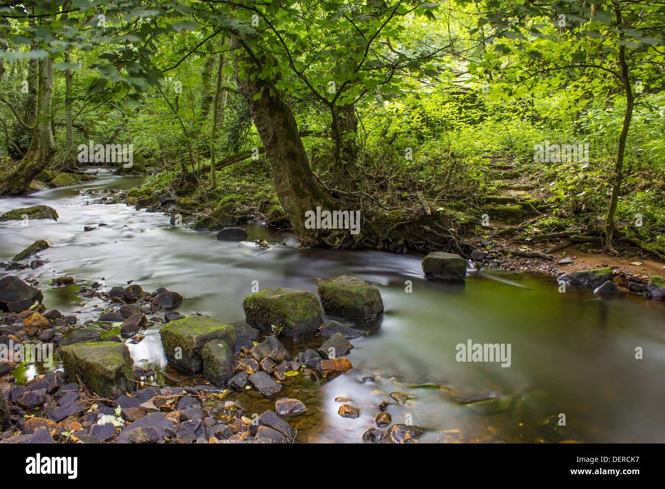 L'exposition à long shot de la rivière et Rivelin tremplins comme il se précipite à travers la vallée de Rivelin Banque D'Images