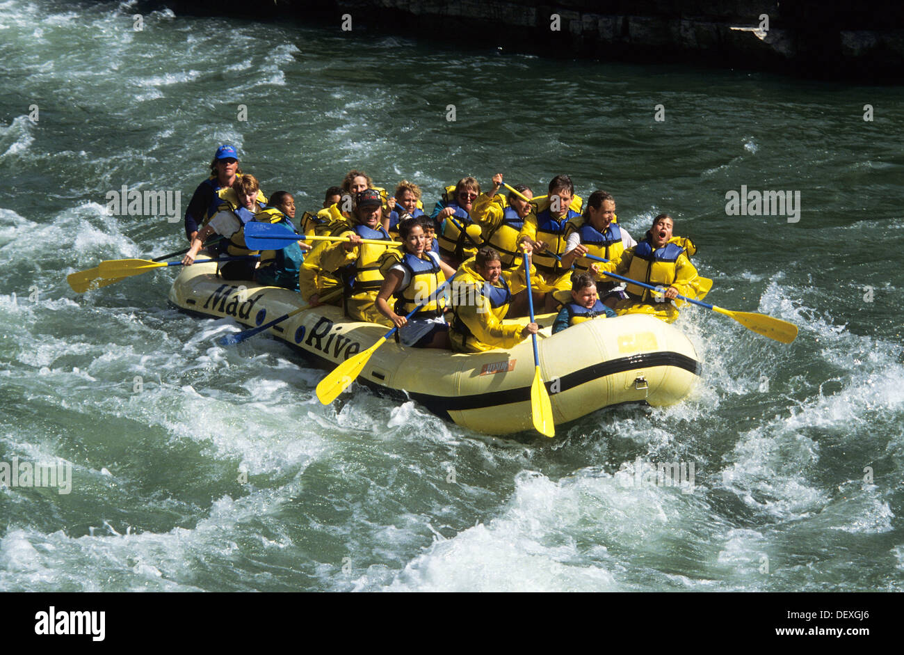Elk266-1259, Wyoming Jackson Hole, Snake River, whitewater rafting Banque D'Images