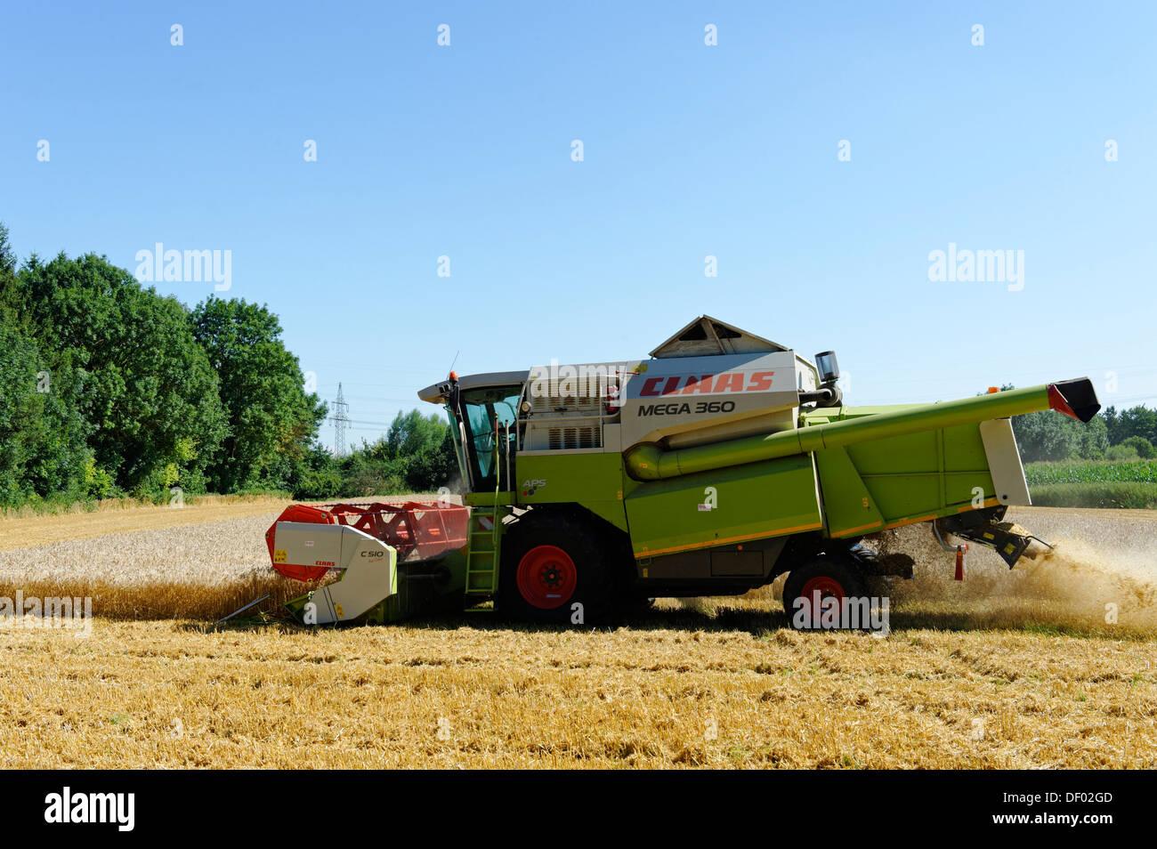 La récolte des céréales, l'agriculture, près de Munich, Haute-Bavière, Bavière Photo Stock