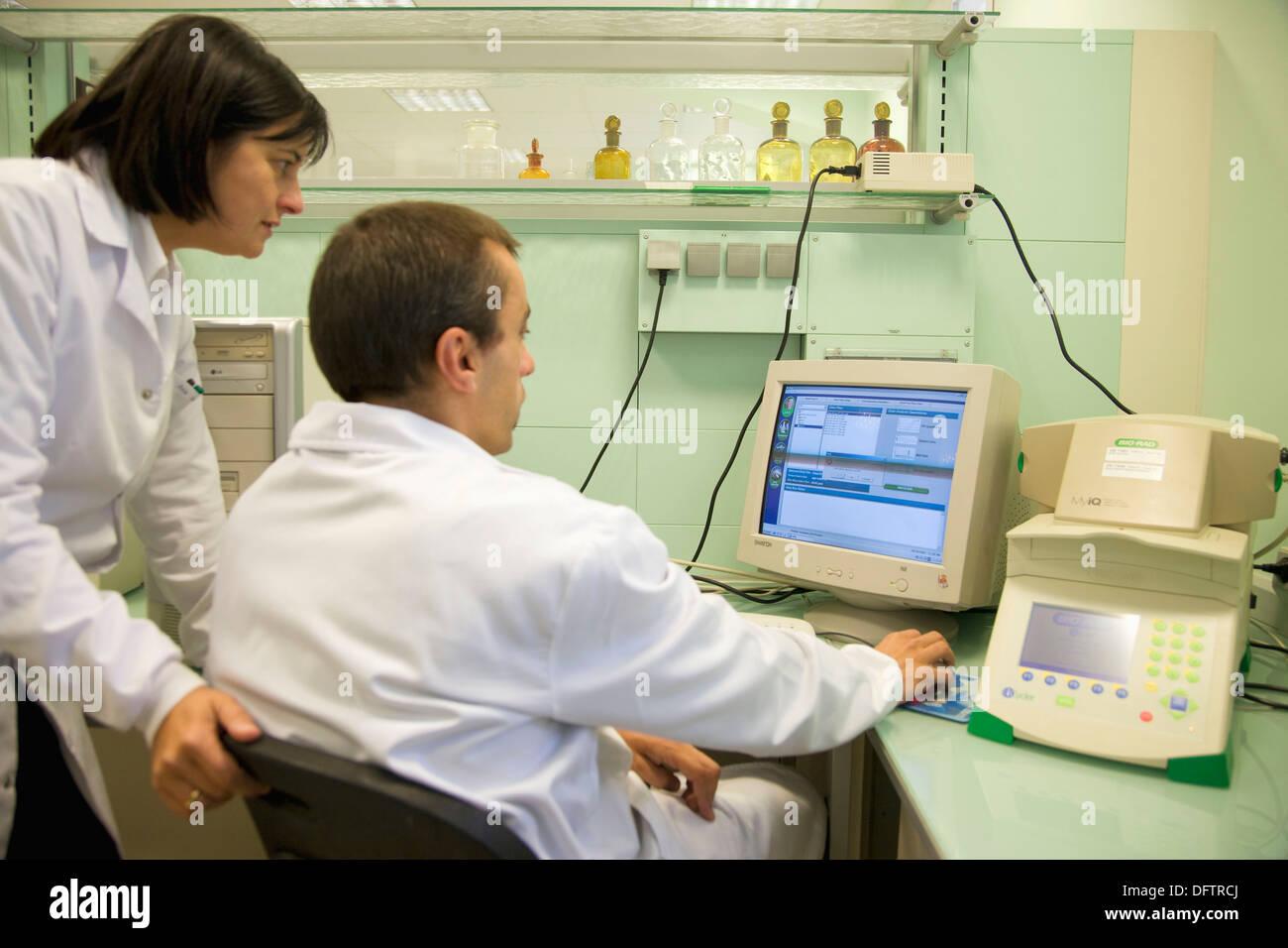 La quantification des Organismes Génétiquement Modifiés (OGM). RT-PCR, analyse de l'ADN, laboratoire de santé des végétaux, Neiker Tecnalia, Photo Stock