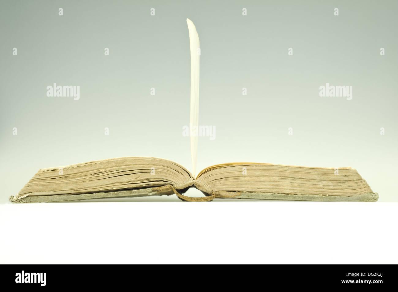Vieux livre ouvert avec la feuille et copyspace Photo Stock