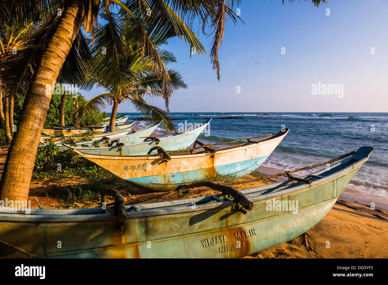 Sri Lanka traditionnels bateaux de pêche sur la plage de Mirissa, Côte Sud, Sri Lanka, Asie Photo Stock