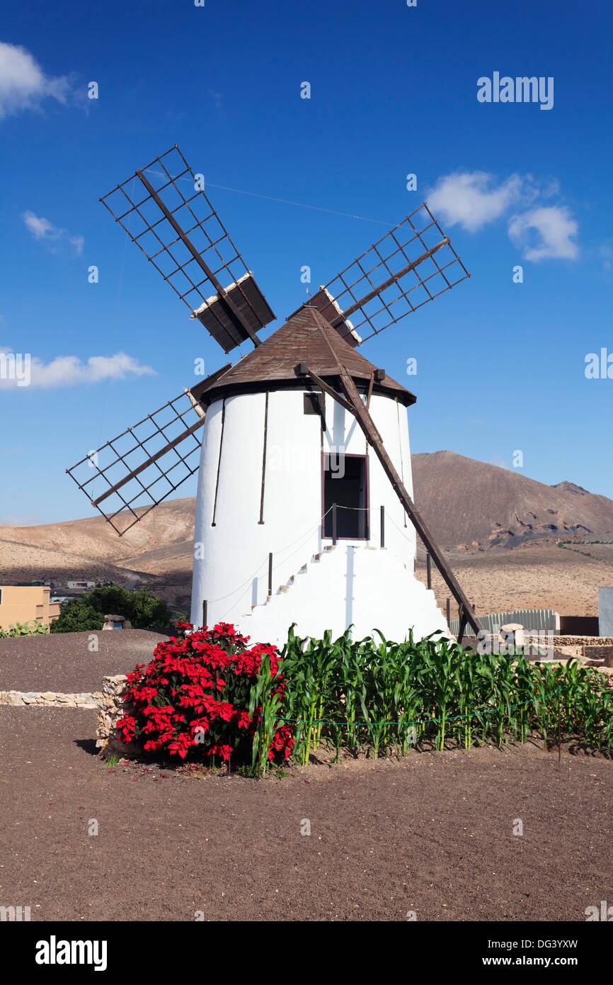 Mill Museum (Centro de Interpretacion de los Molinos), Tiscamanita, Fuerteventura, Canary Islands, Spain, Europe Banque D'Images