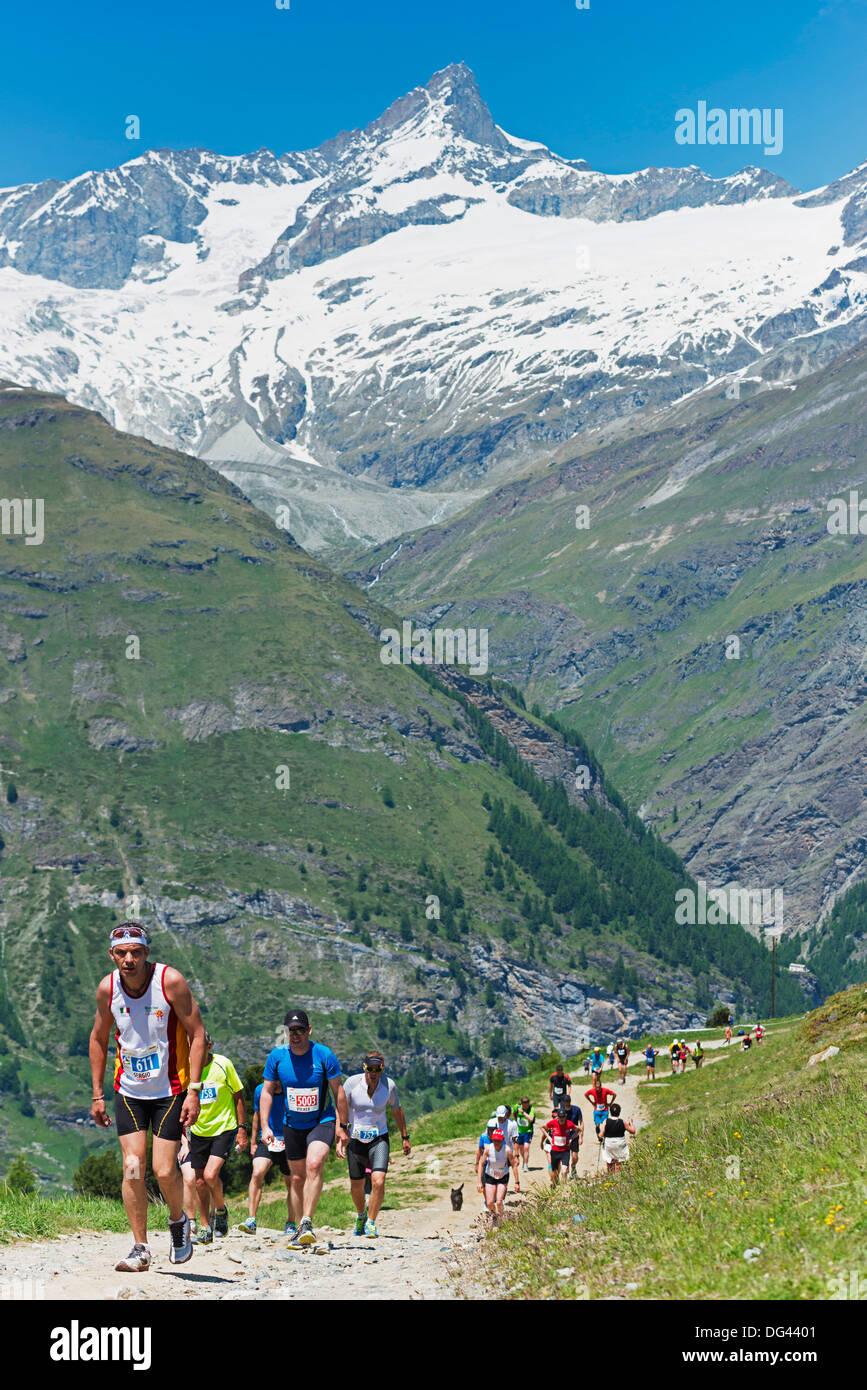 Coureurs dans le Zermatt Marathon et le Cervin, Valais, Alpes Suisses, Suisse, Europe Photo Stock