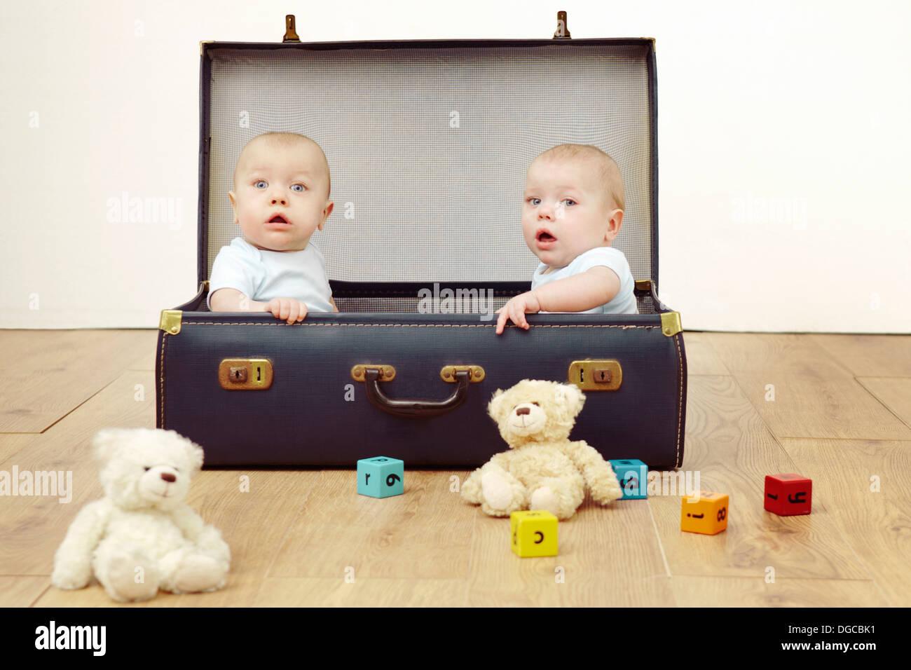Deux garçons de bébé assis dans suitcase, portrait Photo Stock