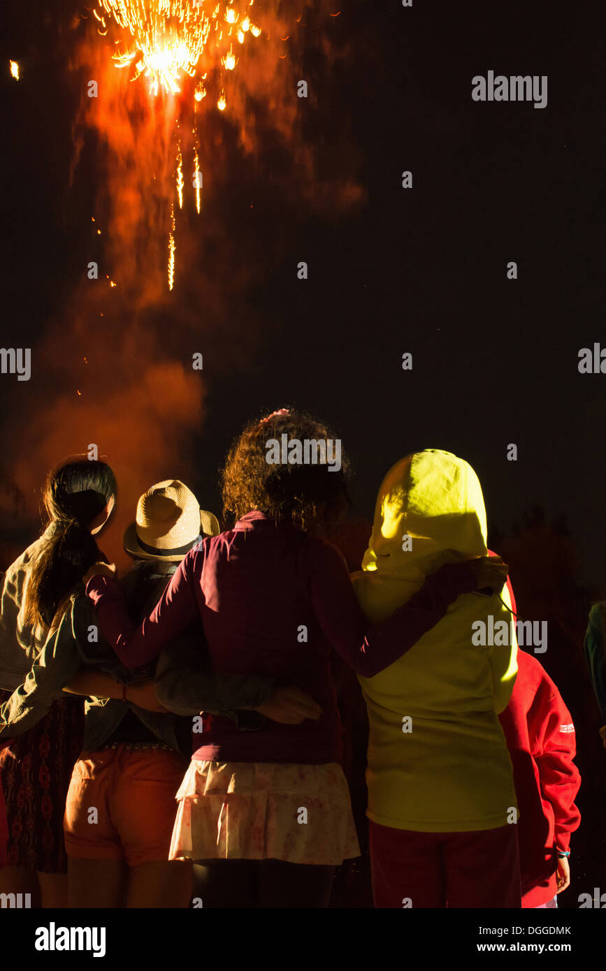 Groupe de personnes watching firework display Photo Stock