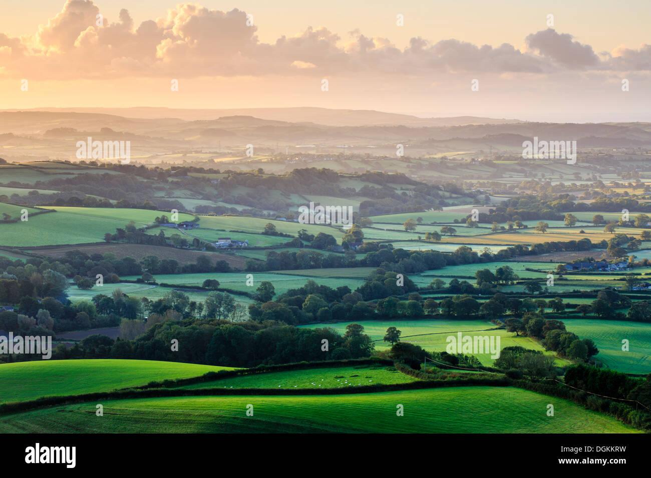 Tôt le matin, vue sur west Dorset de Pilson Pen hill fort qui est le point le plus élevé dans le Dorset. Photo Stock