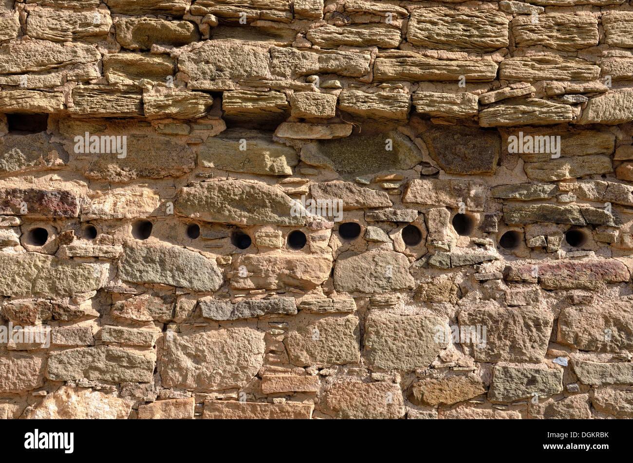 Détail du mur avec des ouvertures pour les poutres rondes, Anasazi, règlement historique Aztec Ruins National Monument, Aztec, Nouveau Mexique Photo Stock