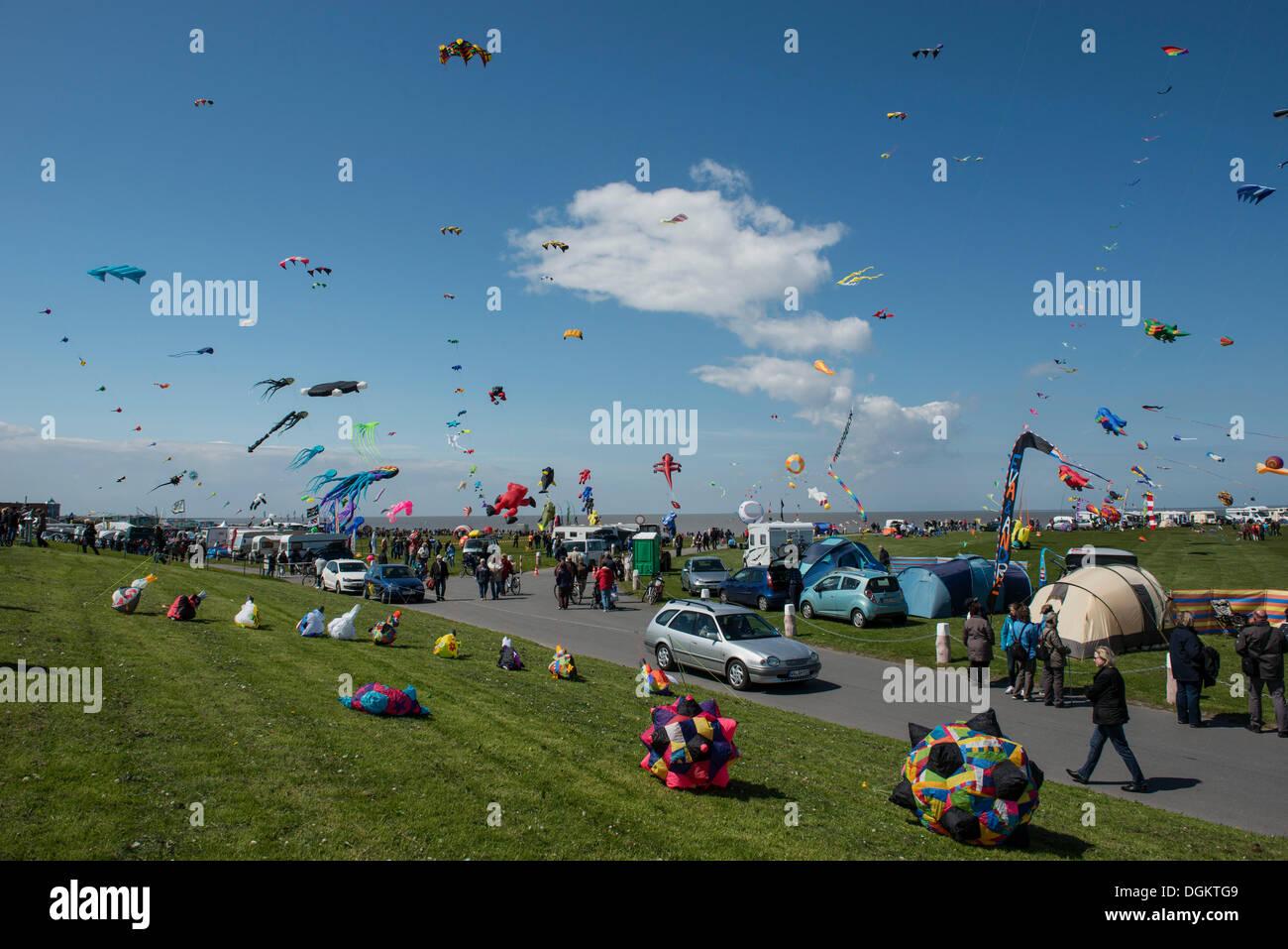 Drachenfest International kite festival, Norden, Frise orientale, Basse-Saxe Photo Stock