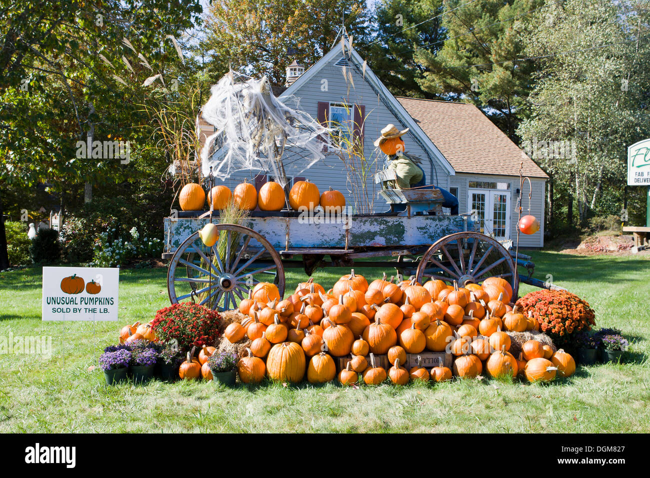 Maine Halloween Maine New England Photos & Maine Halloween Maine New ...