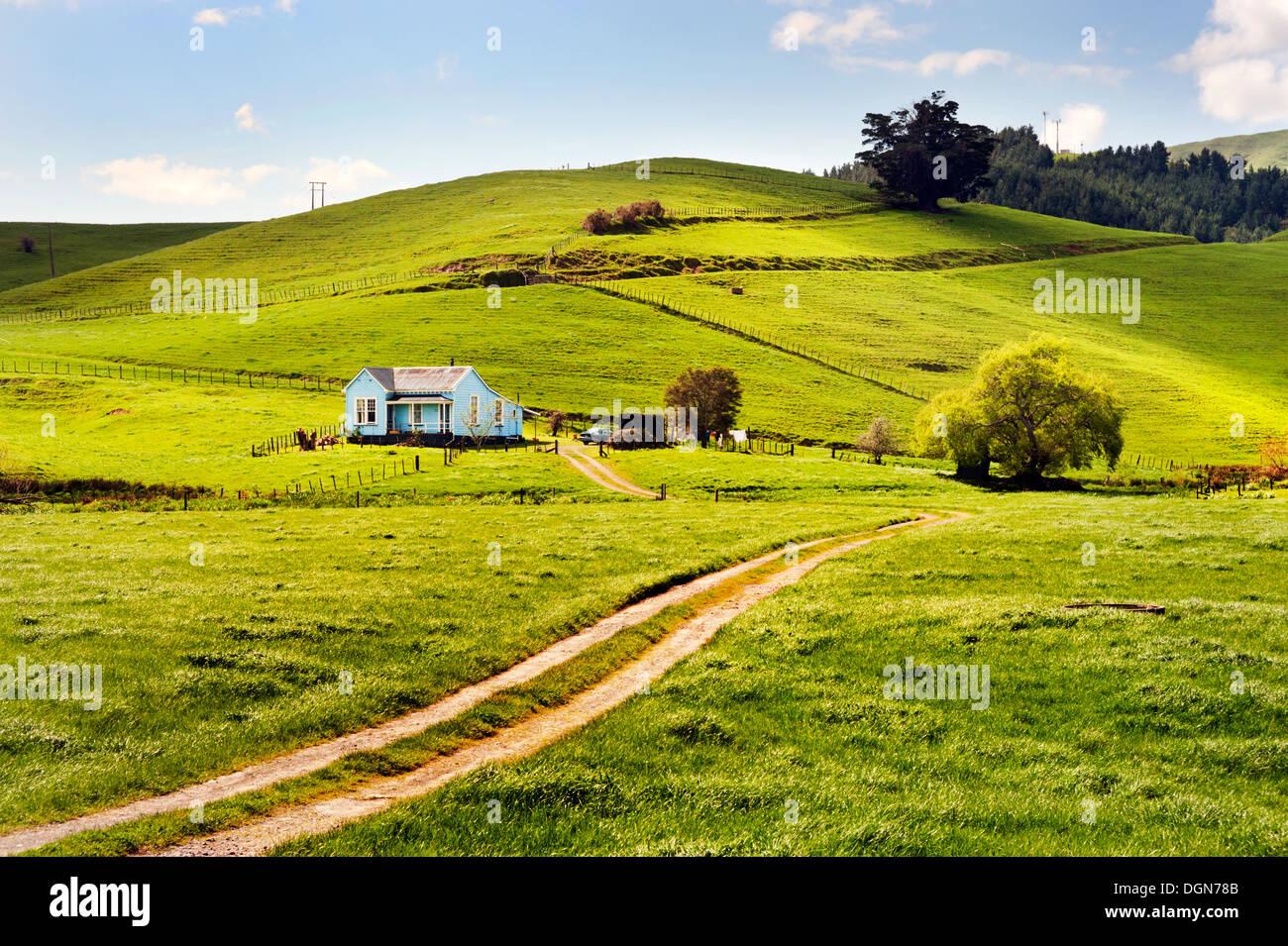 Petite maison en bois dans la campagne, près de la péninsule de Coromandel, Paeroa, Nouvelle-Zélande Photo Stock