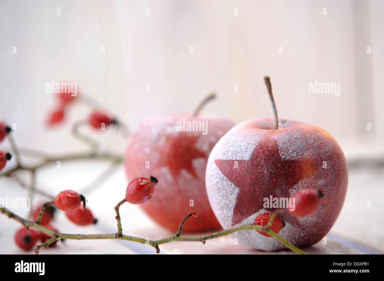 Ambiance de Noël avec des pommes rouges et d'églantier Photo Stock