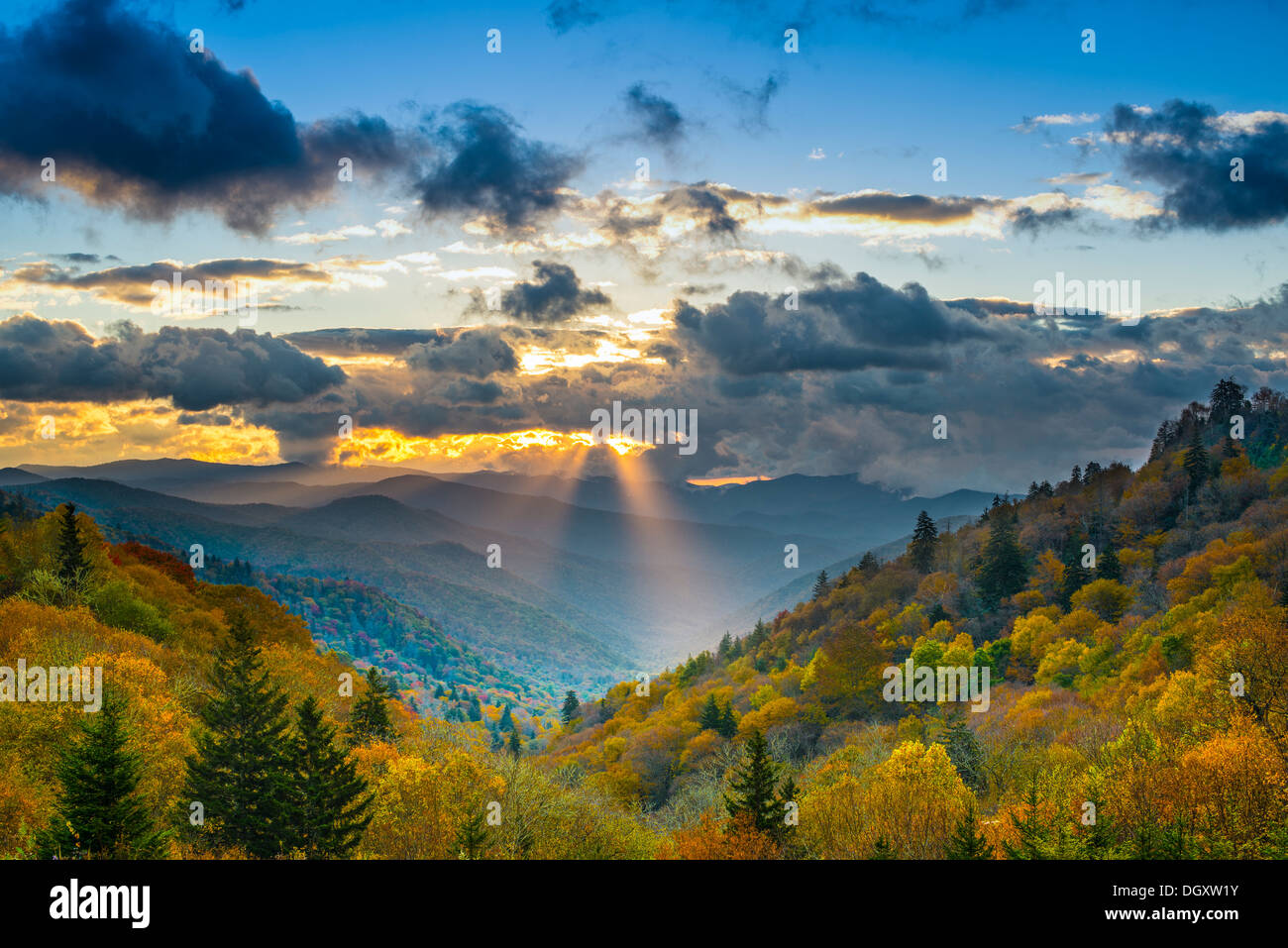 Lever du soleil d'automne dans les Smoky Mountains National Park. Photo Stock