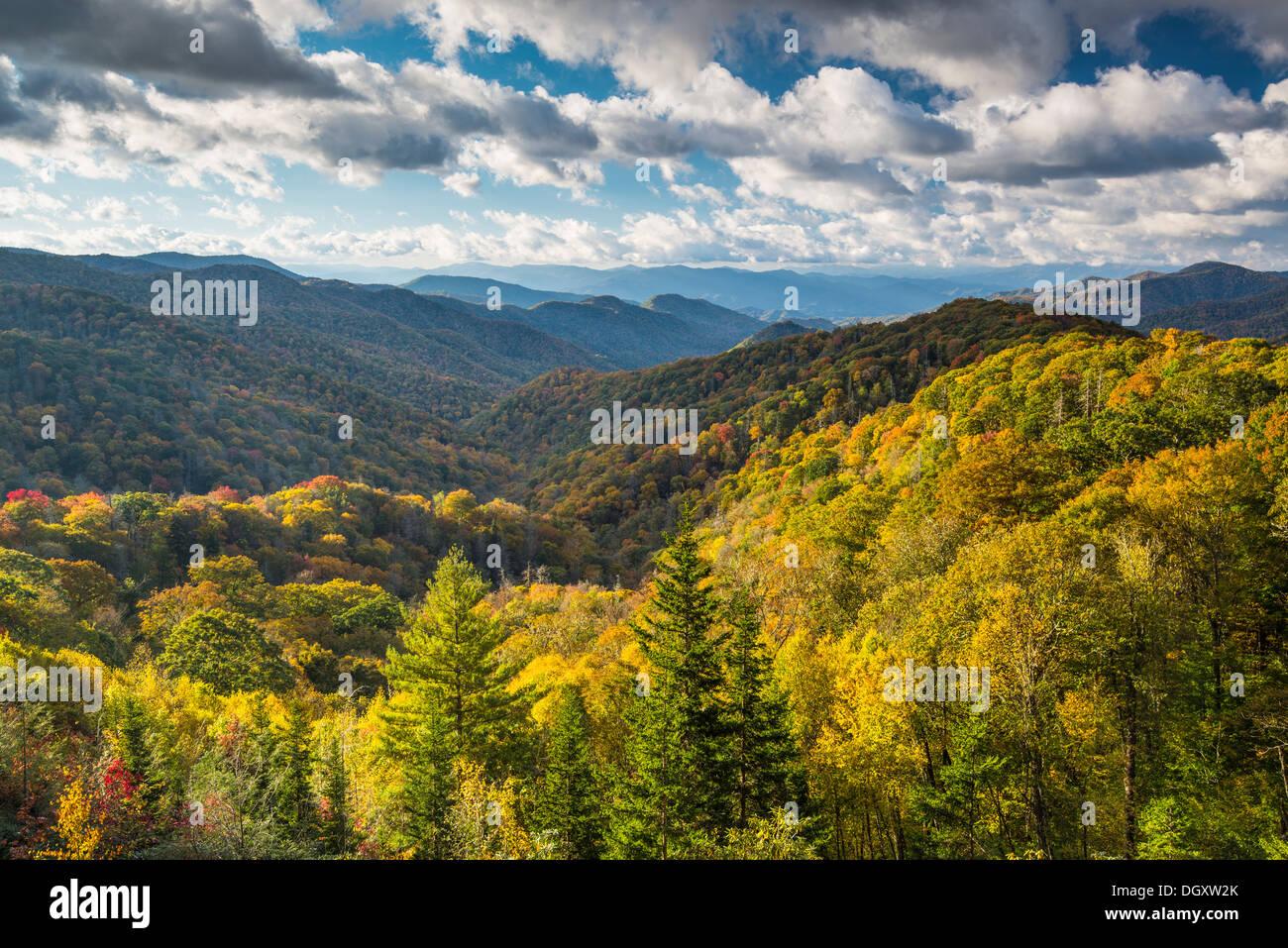 Paysage de montagnes fumeuses à Newfound Gap à l'automne. Photo Stock