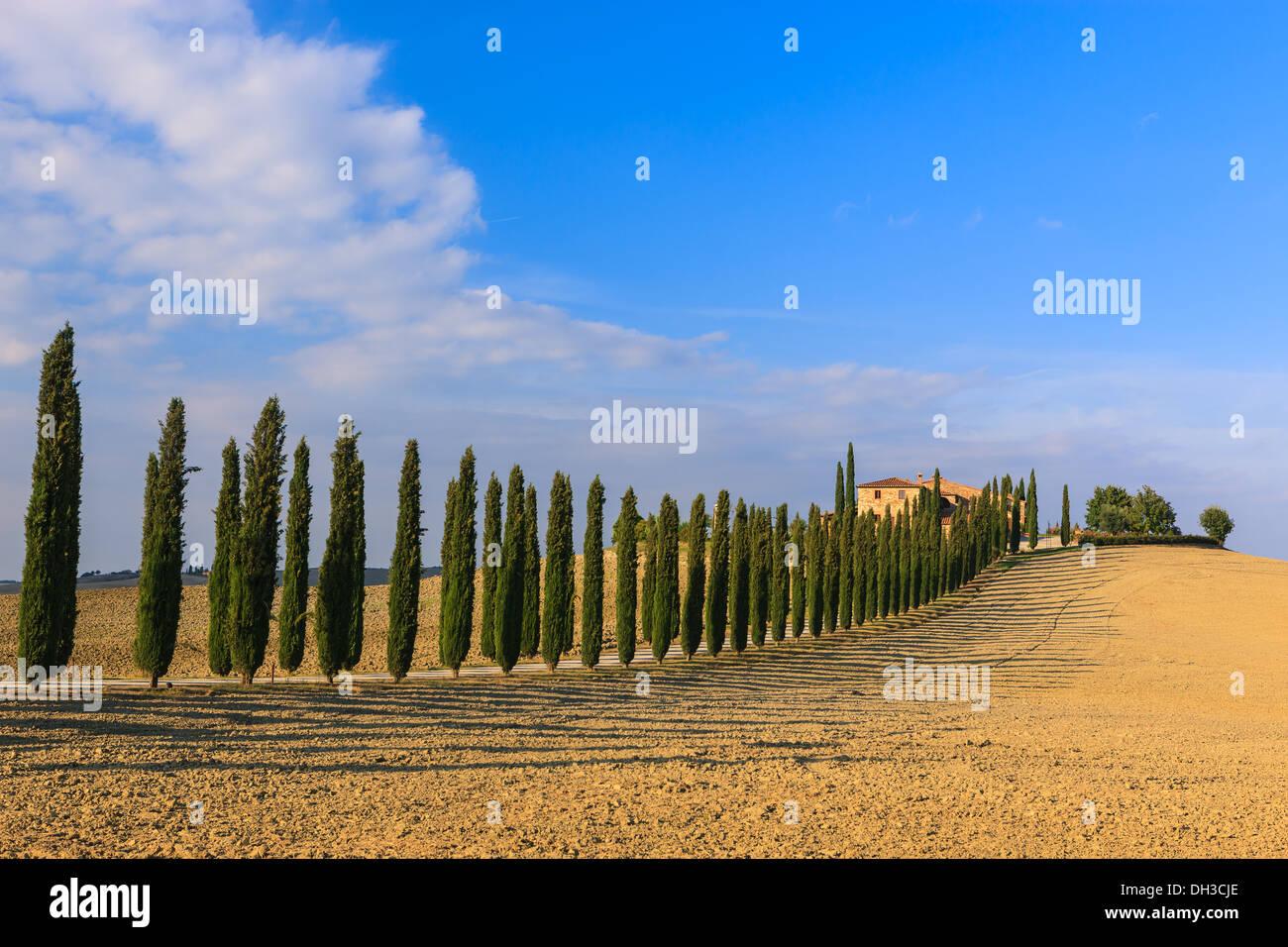 Au coeur de la Toscane, dans la campagne du Val d'Orcia, se trouve l'Agriturismo Poggio Covili Photo Stock