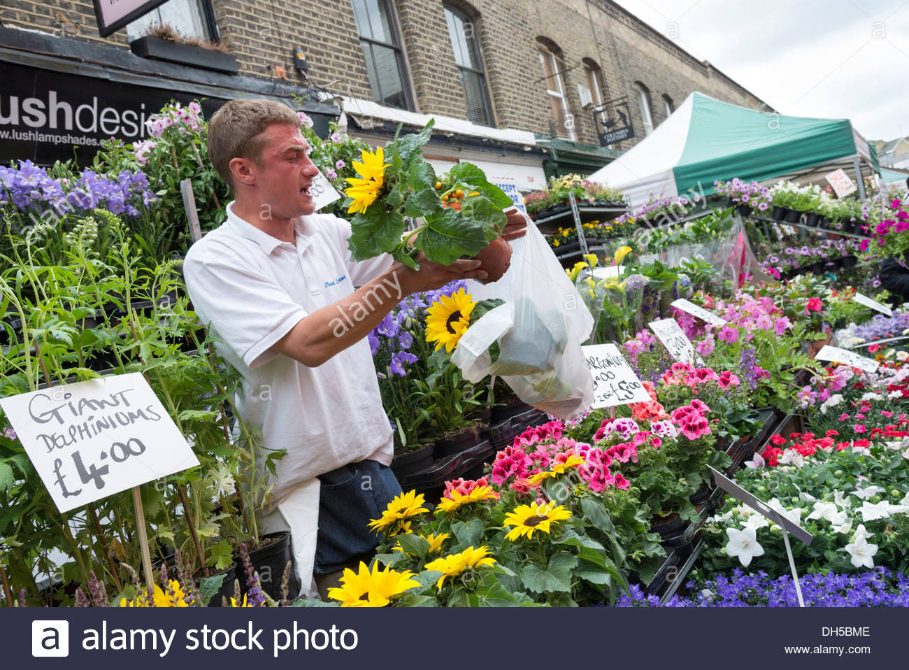 Commerçant rue vente de fleurs à Columbia Road Flower Market, London, England, UK Photo Stock