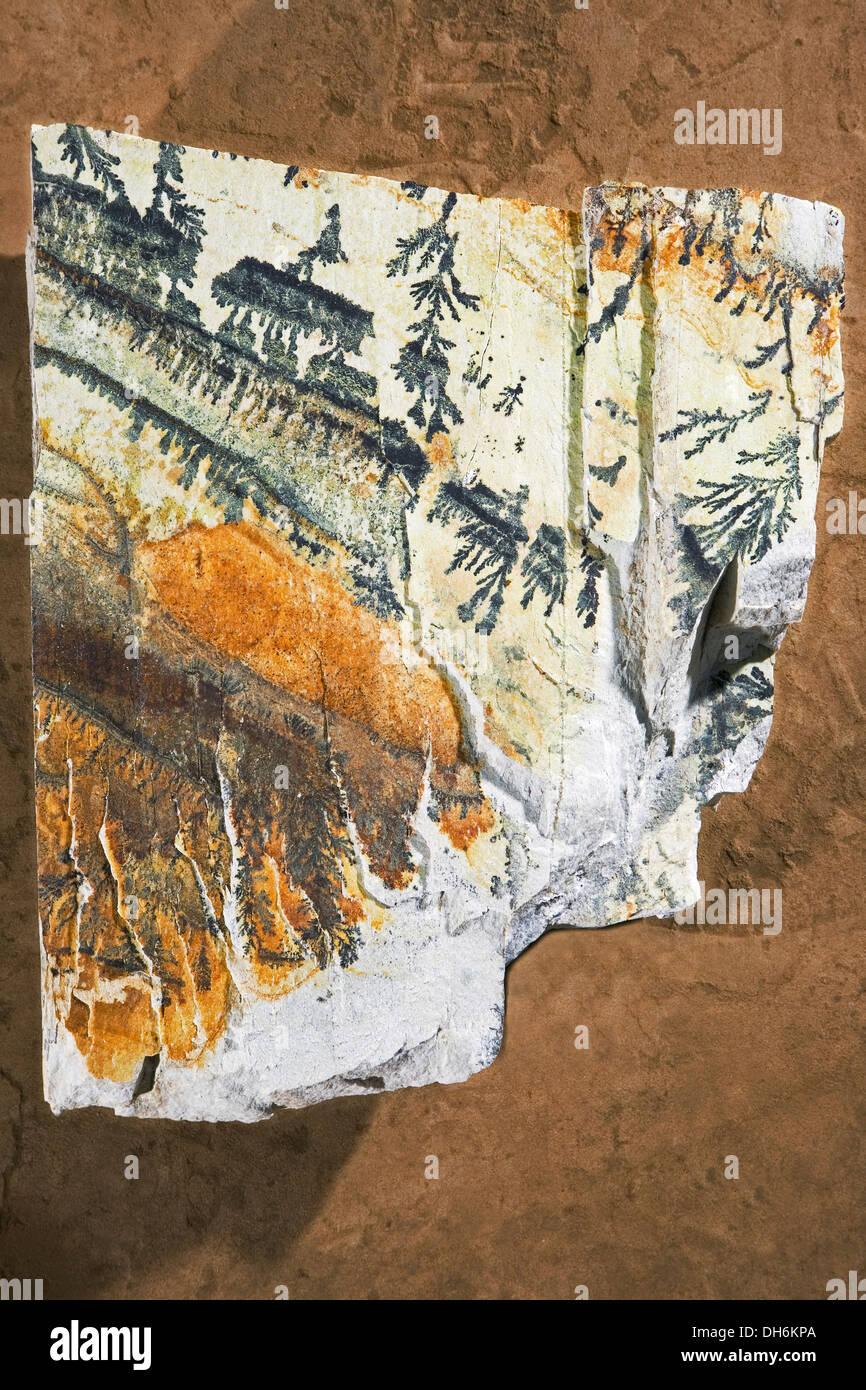 Spécimen de rock géologiques montrant avec une rhyolite meta fer et  manganèse tache brune sur fer 241f927f7bb