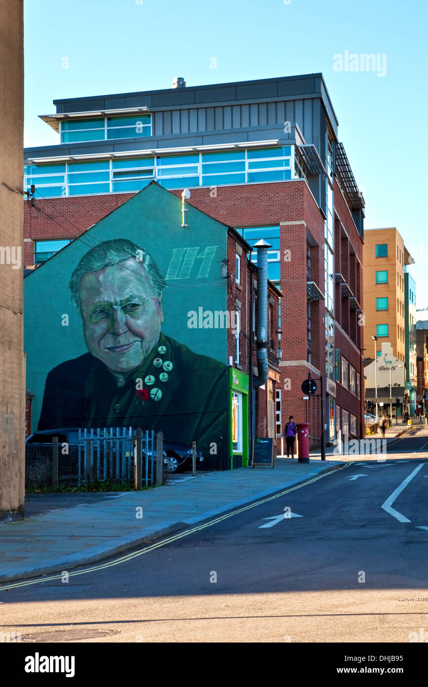 Le David Attenborough murale sur Charles Street Sheffield South Yorkshire, UK Banque D'Images