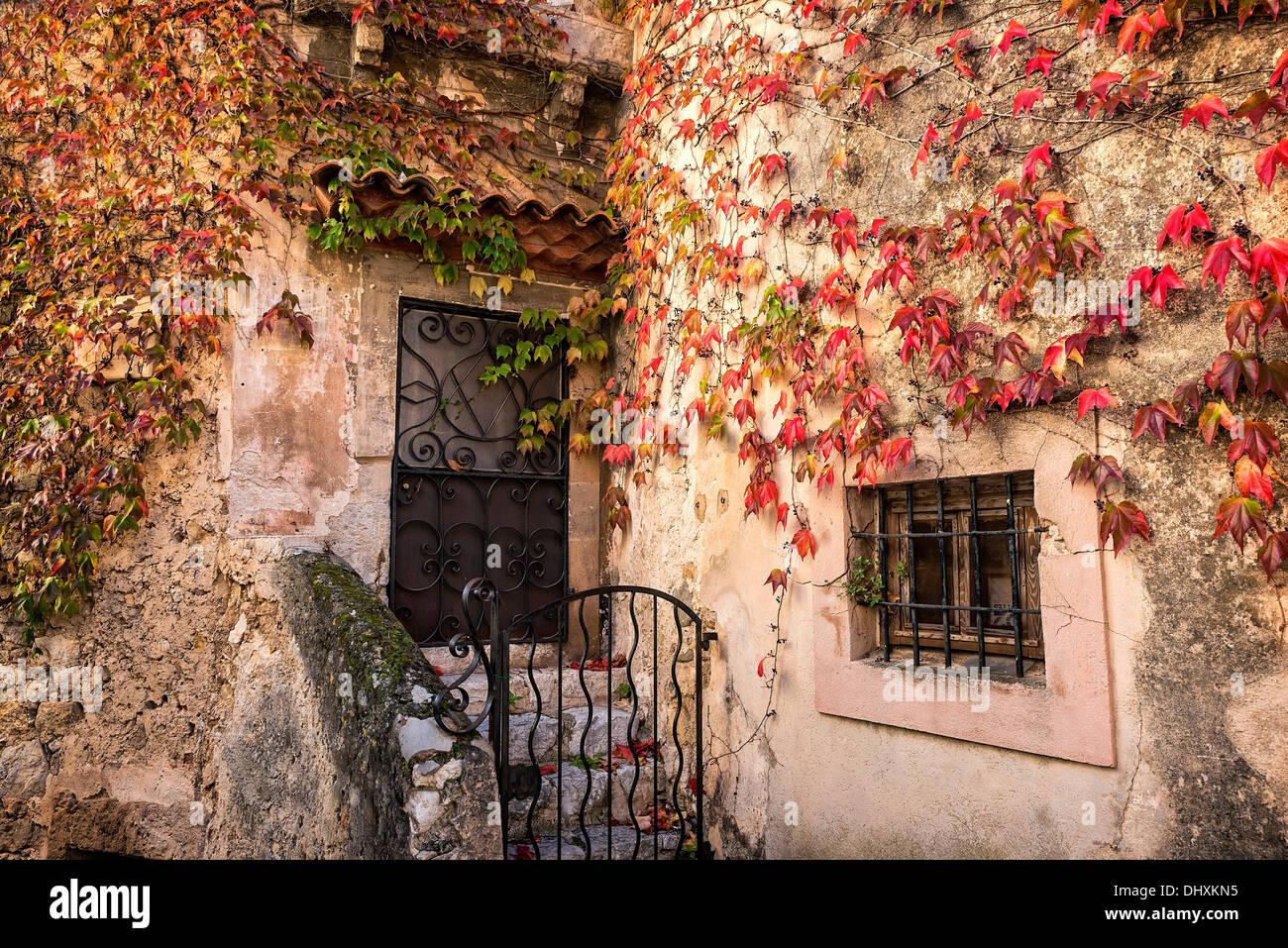 Façade rustique de charme et de lierre, eza, Côte d'azur, france Photo Stock