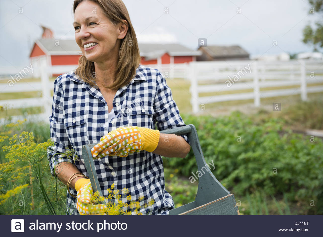 Woman standing in garden Photo Stock
