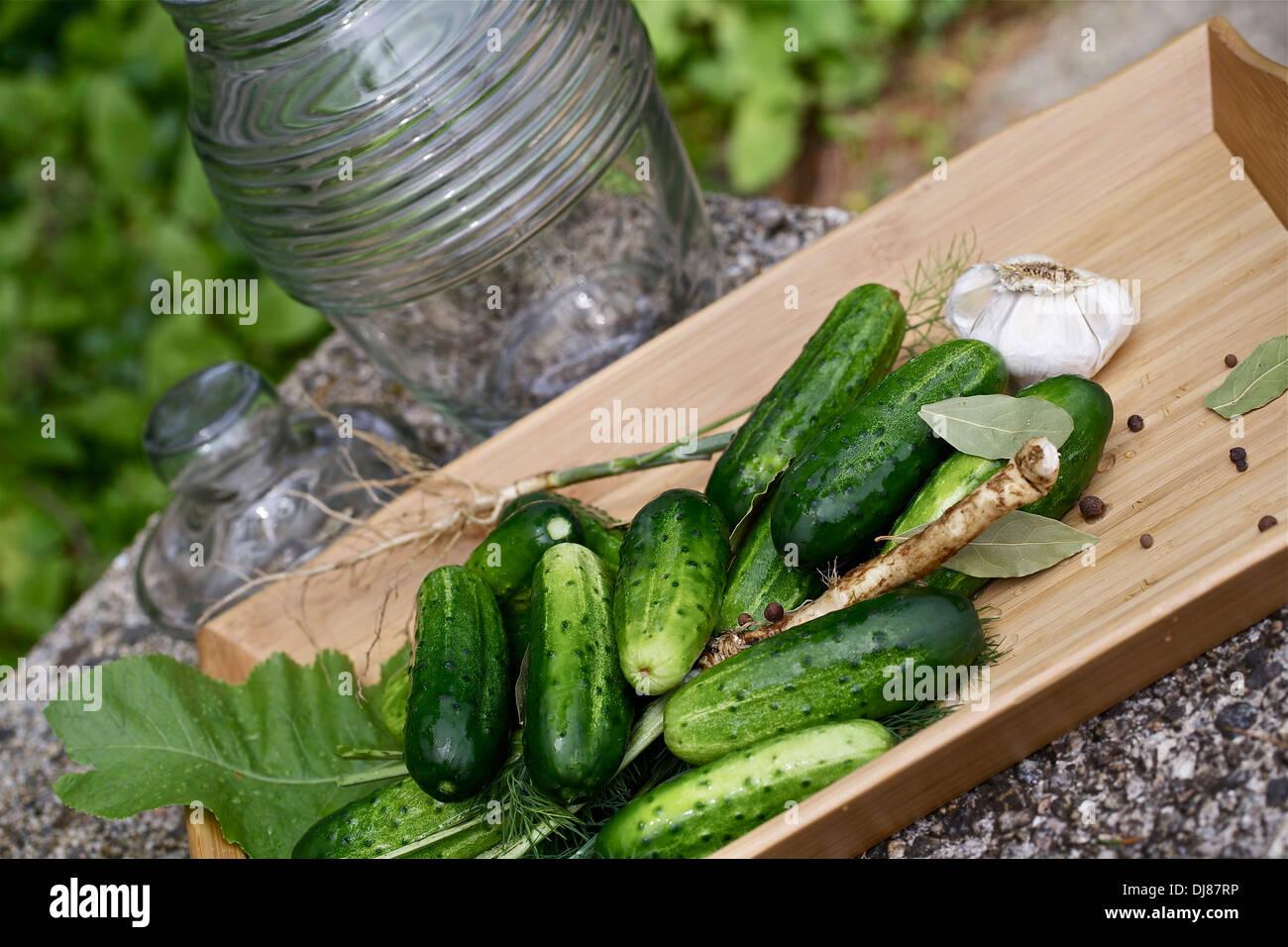 Les concombres et les ingrédients frais, les conserves maison Photo Stock
