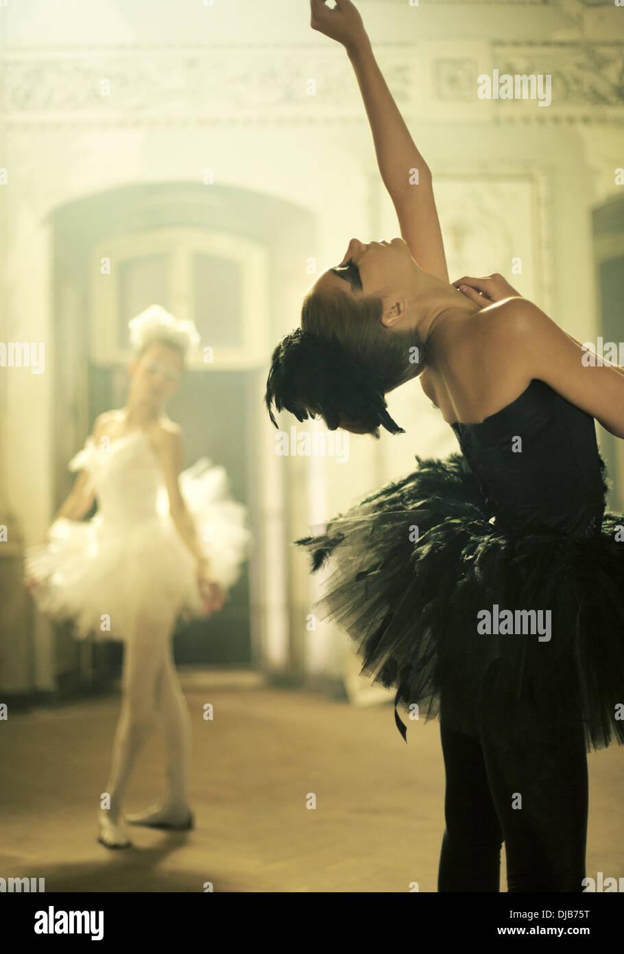 Deux danseurs de ballet en tant que jeunes cygnes Photo Stock