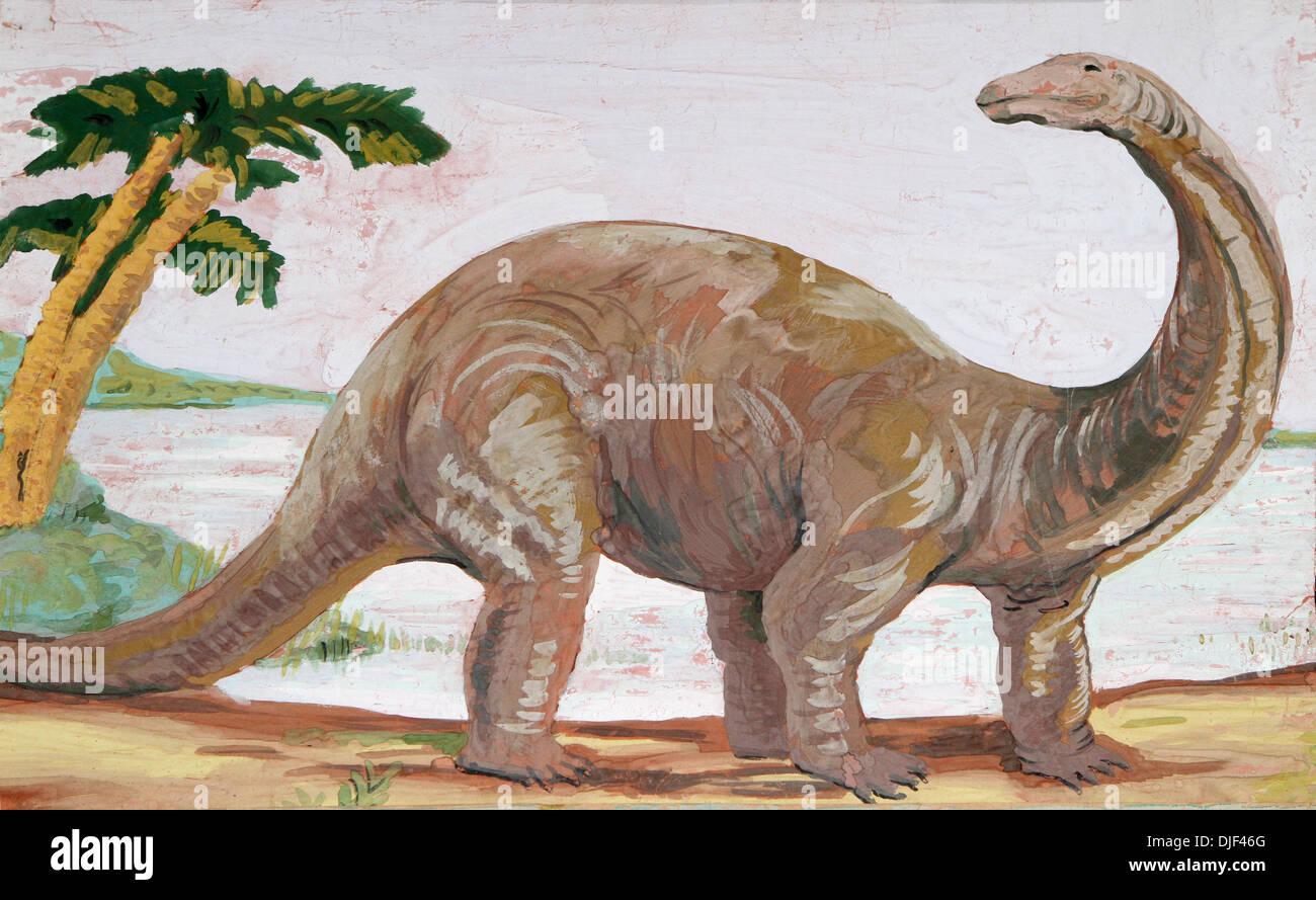 Dinosaur brontosaurus diplodocus drawing photos dinosaur - Dinosaure diplodocus ...
