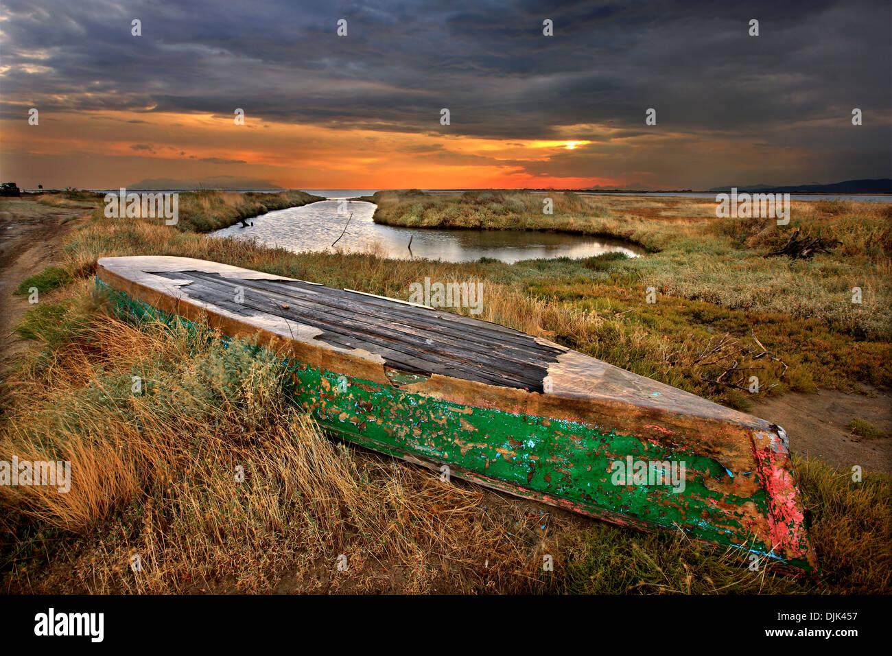 Plava traditionnel (bateau à fond plat des eaux peu profondes) au delta du fleuve Evros, Thrace, Grèce. Photo Stock