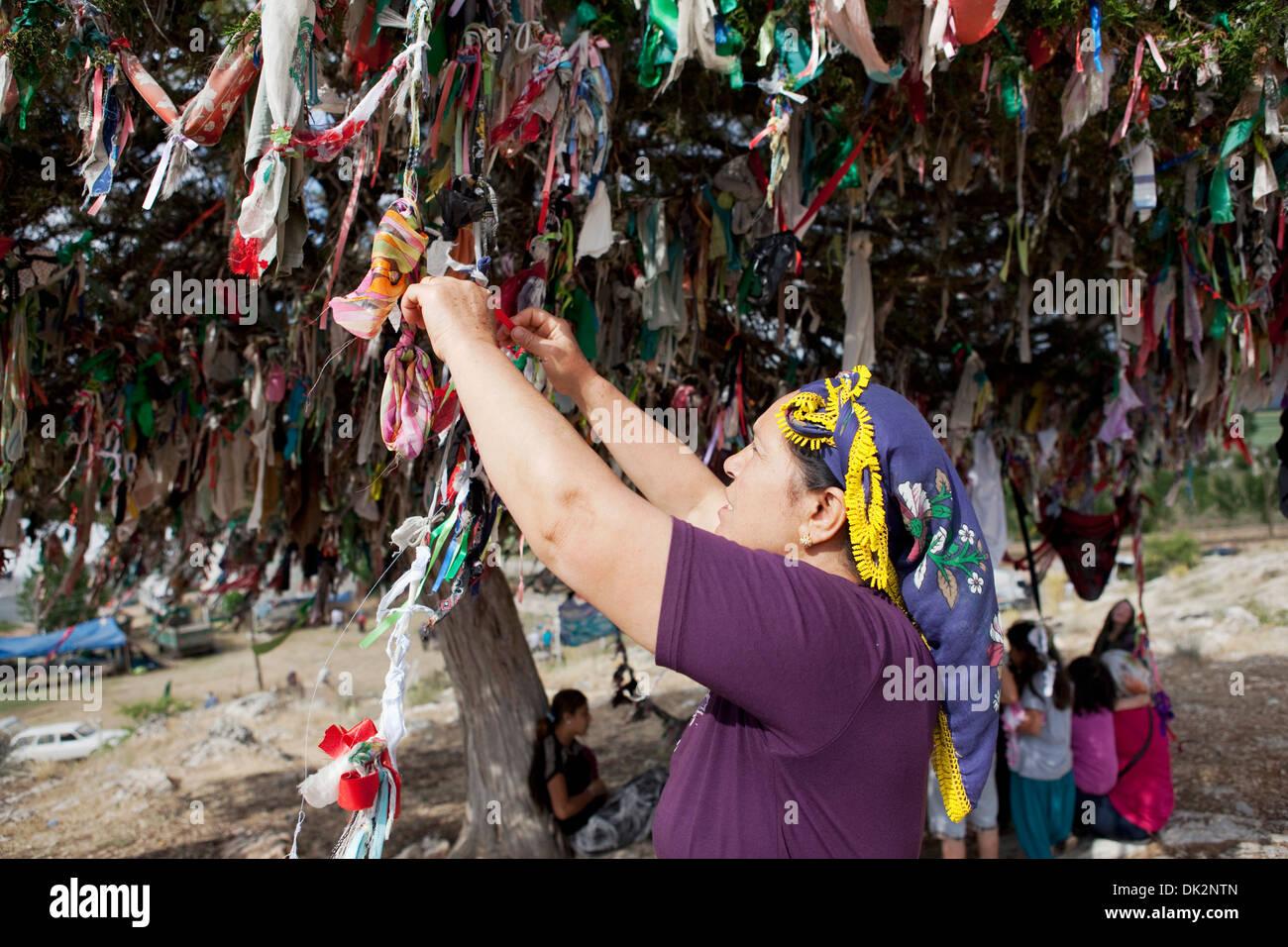 Les Alevi rubans de liage sur un arbre des désirs de Tekke Köyü Abdal Musa culte Elmalı Antalya Turquie Banque D'Images