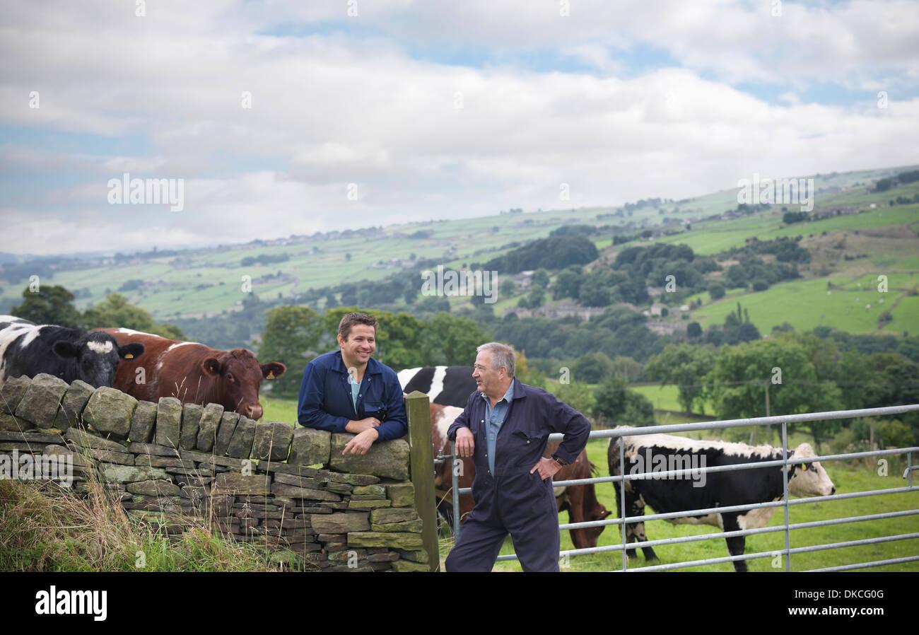 Agriculteur et son fils s'appuyant sur mur de pierre et discuter de cattle in field Photo Stock