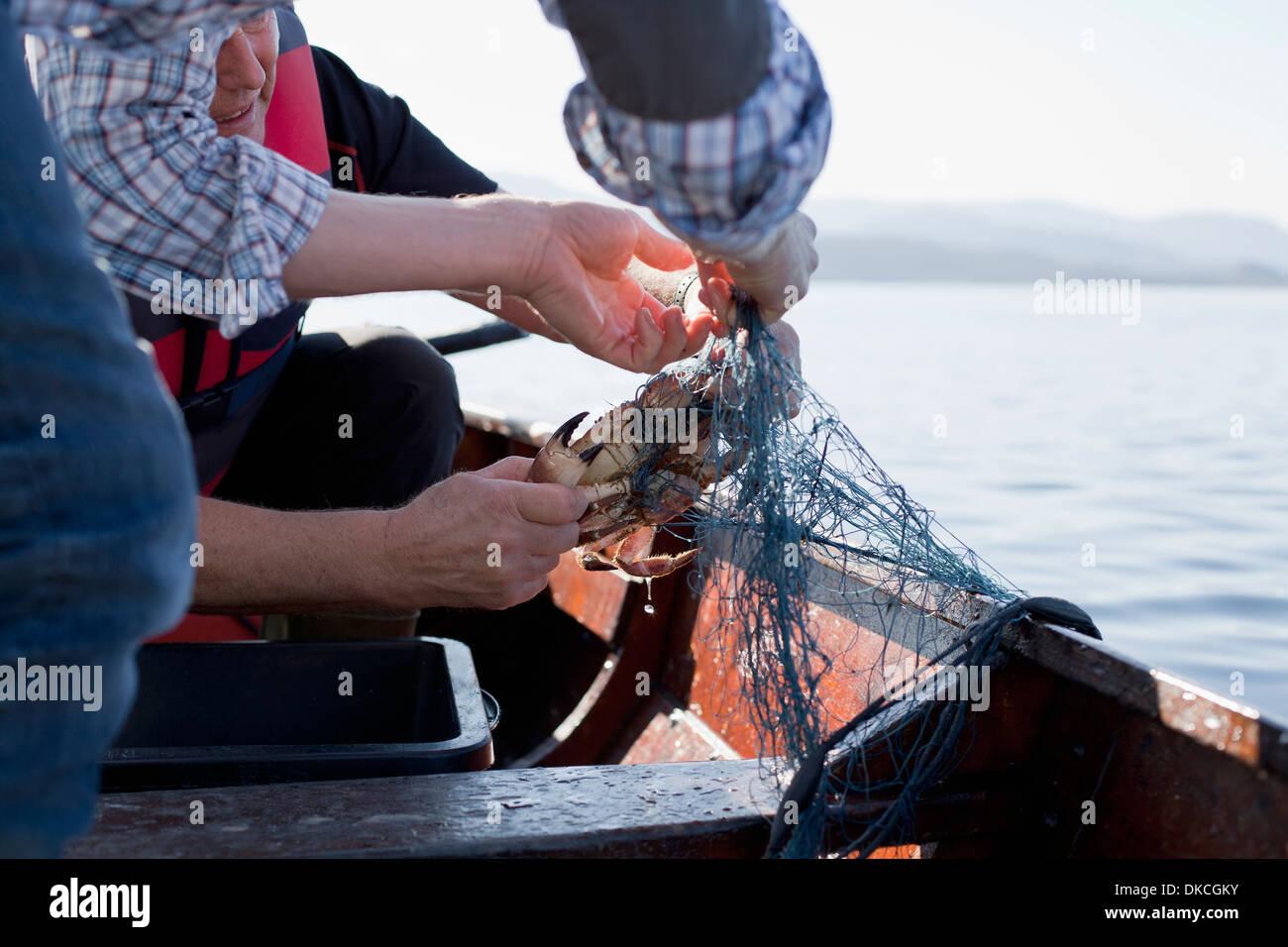 Les gens sur le bateau de pêche de crabes, Aure, Norvège Photo Stock