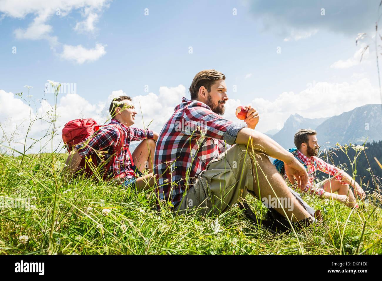 Amis de sexe masculin se reposant sur randonnée pédestre, Tyrol, Autriche Photo Stock