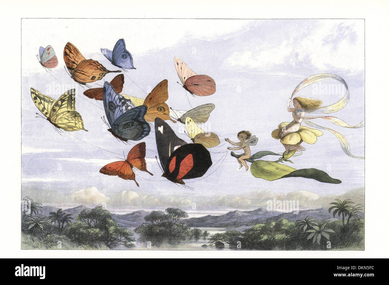 La reine des fées prend un lecteur dans un chariot tiré par des papillons. Photo Stock