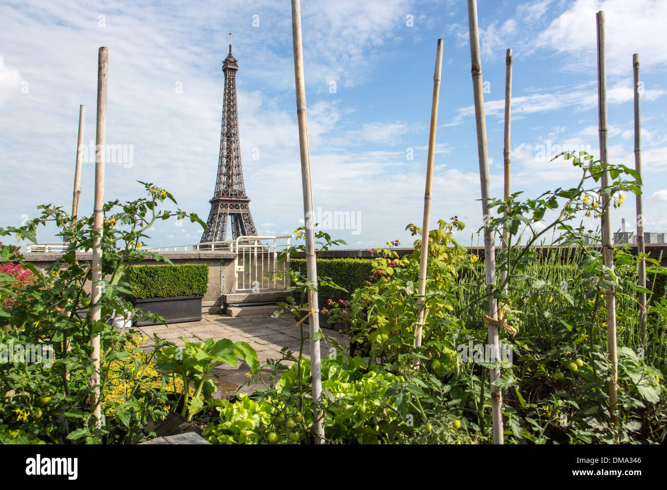 Potager Jardin Avec Vue Sur La Tour Eiffel Du Toit