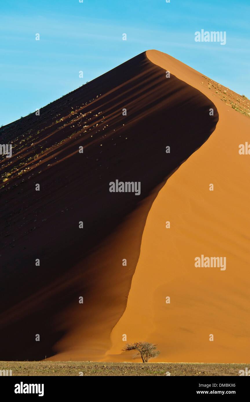 Dune de sable rouge, Nabib-Naukluft, Parc national du désert de Namib, Namibie Sossusvlei, Afrique du Sud Photo Stock