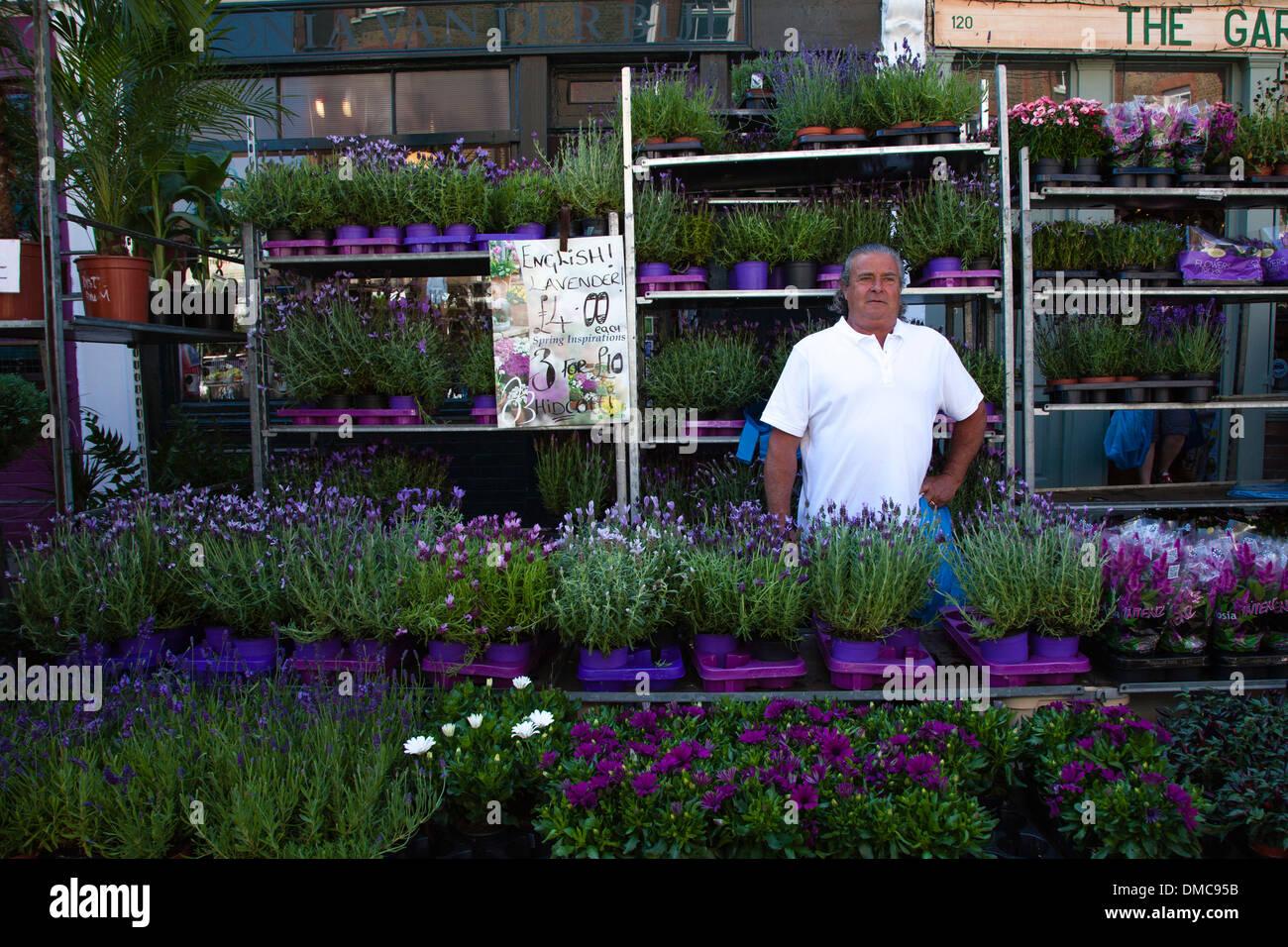 Blocage de lavande, Columbia Road Flower Market, Londres Photo Stock