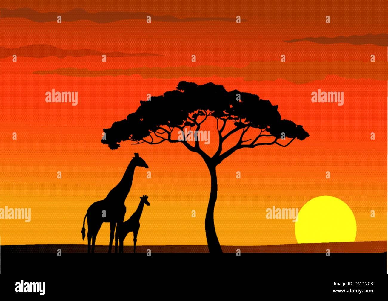 coucher de soleil de l'Afrique Photo Stock