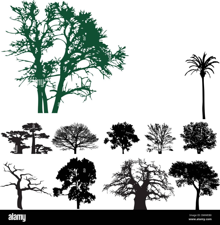 La silhouette des arbres collection Photo Stock