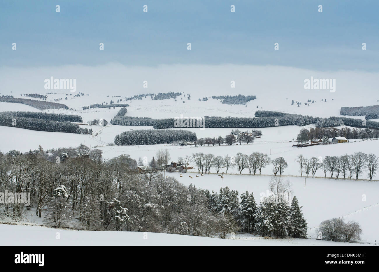 Royal Deeside dans aberdeenshire avec countryside farmland in snow Photo Stock