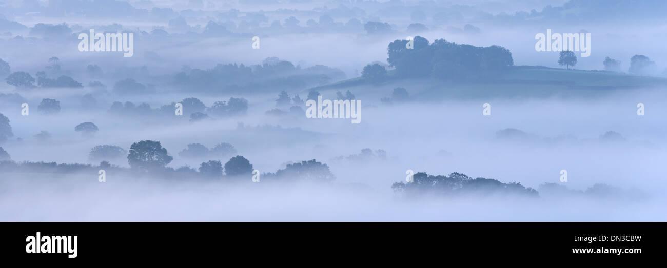 Mist couverts campagne de Somerset Levels, Wells, Somerset, Angleterre. L'automne (septembre) 2013. Banque D'Images