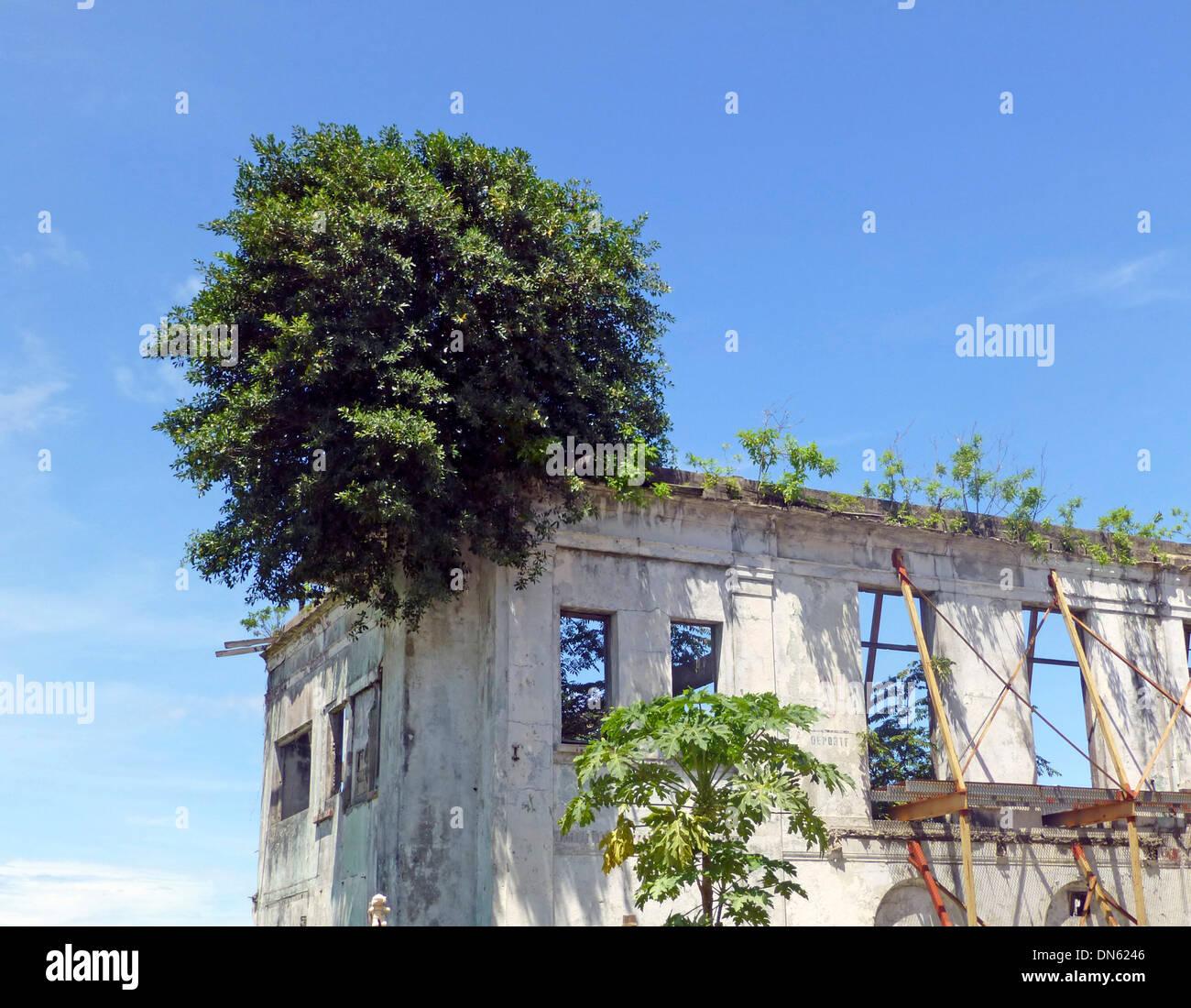 Maison délabrée dans le centre historique Casco Viejo, aussi vieille ville ou San Felipe, Panama City, Panama Photo Stock